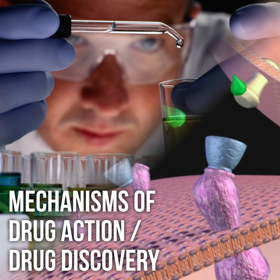 Mechanisms of Drug Action / Drug Discovery