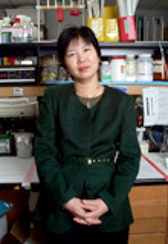 K. Sandy Pang, PhD
